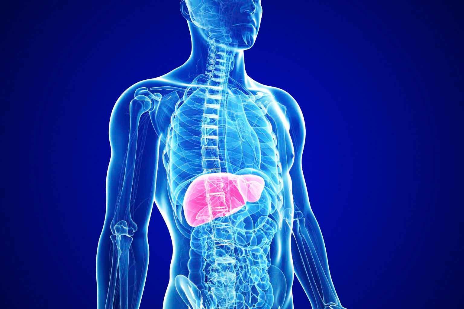 enfermedad autoinmune higado sintomas